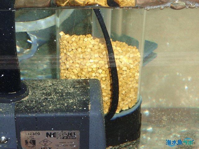 バイオペレットリアクターと水中ポンプ